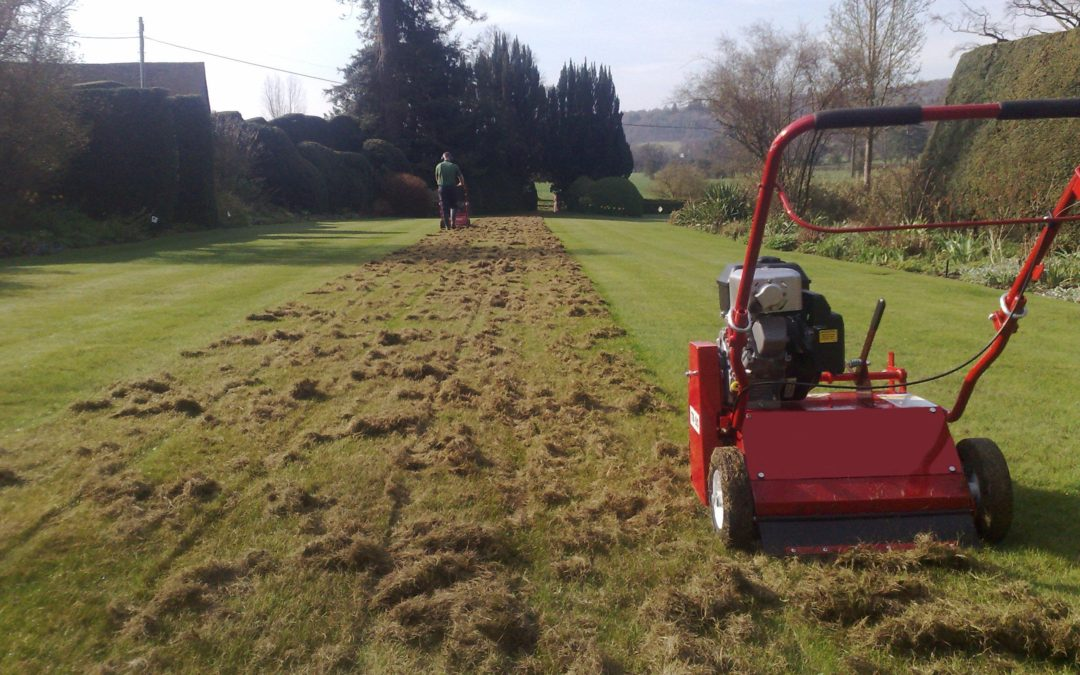 "What is ""scarifying"" and why do it?"